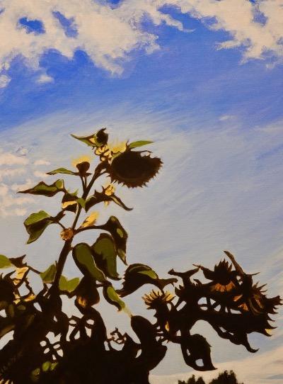 BILLYK 3. Sunflowers at dusk acrylic 20 x 16